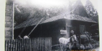 Drevenice v obci